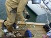 Baltic Sea Waste Campaigne 2012