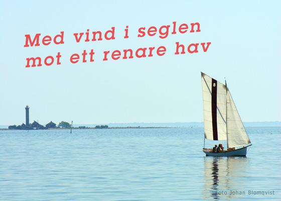Med vind i seglen mot ett renare hav